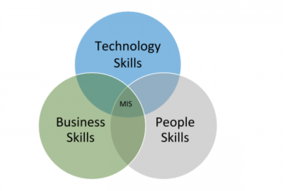 Venn diagram depicting information systems management skills